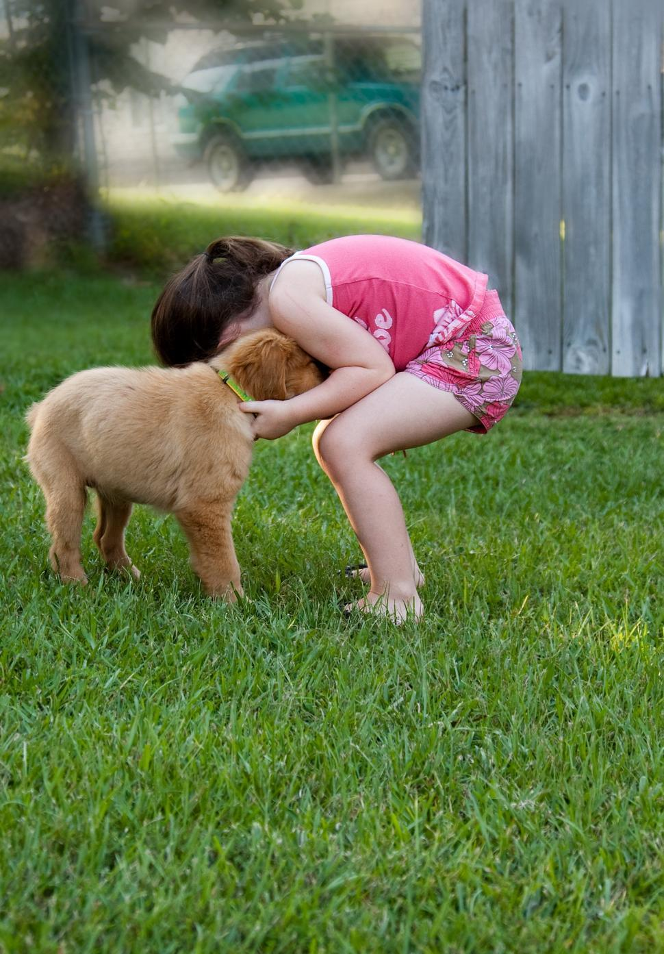 Free stock photo of young girl playing with a golden Retriever