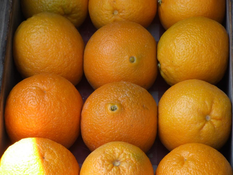 Download Free Stock HD Photo of Oranges Online