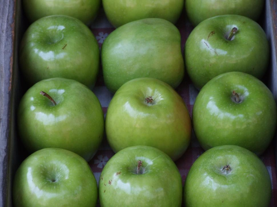 Download Free Stock HD Photo of Apples Online