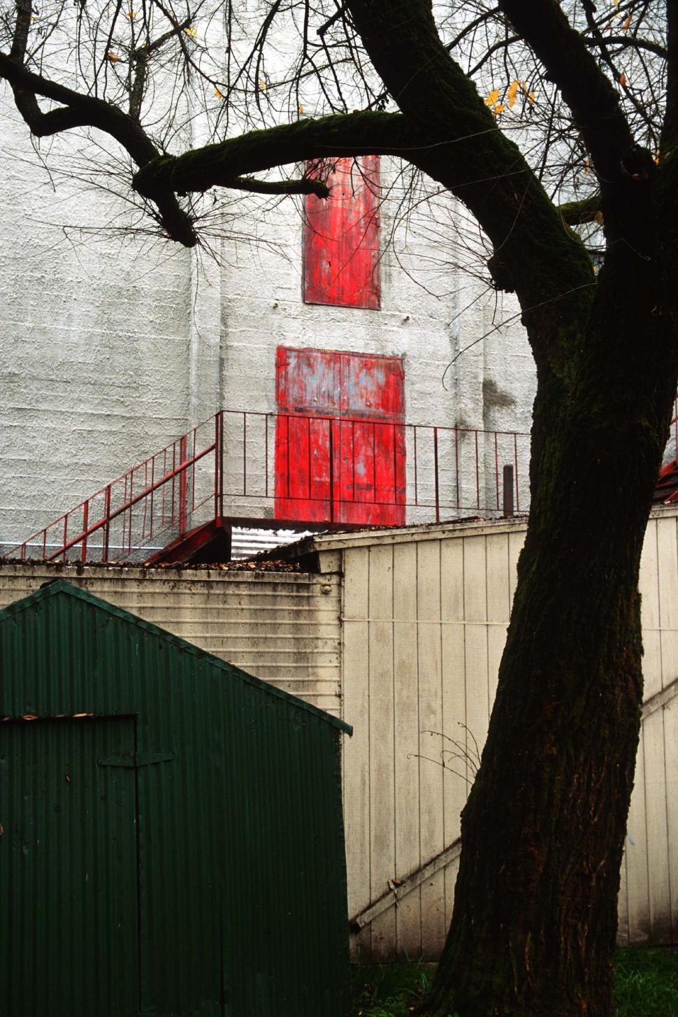 Free image of Weathered red door in the background of tree shapes.