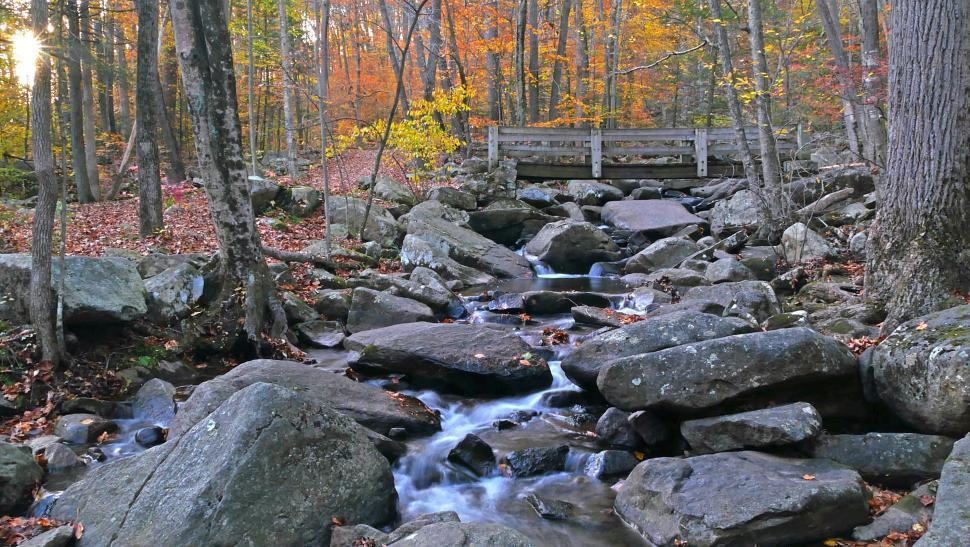 Download Free Stock HD Photo of Wooden Footbridge Crossing Brook with Boulders Online