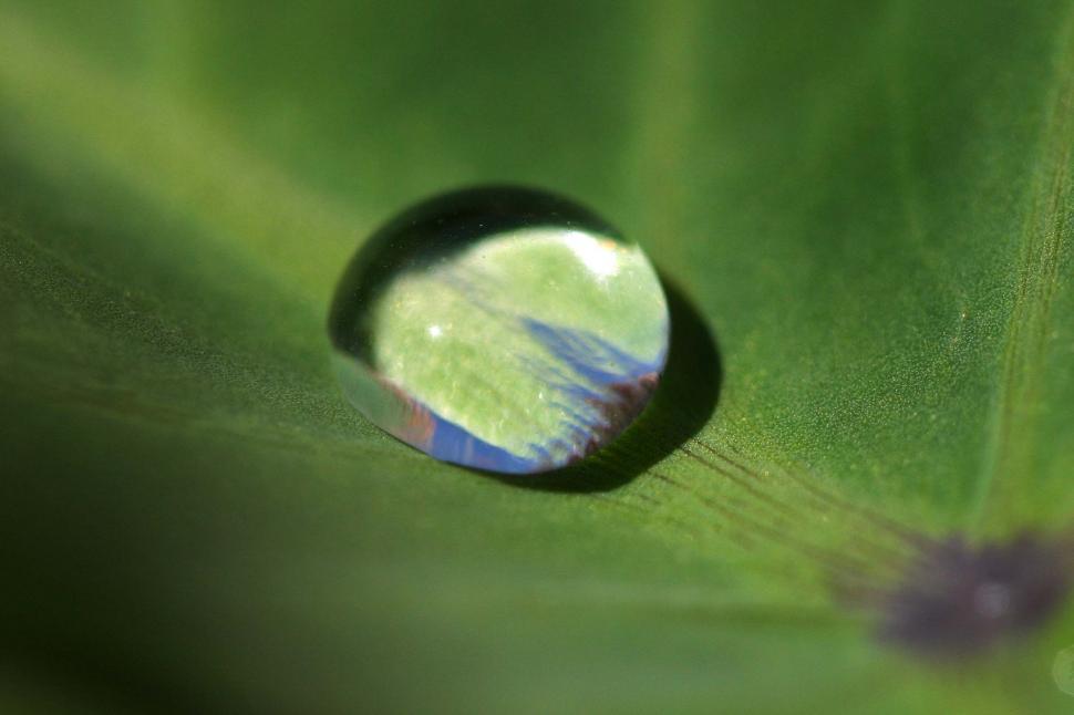 Download Free Stock HD Photo of Bead of water drop Online