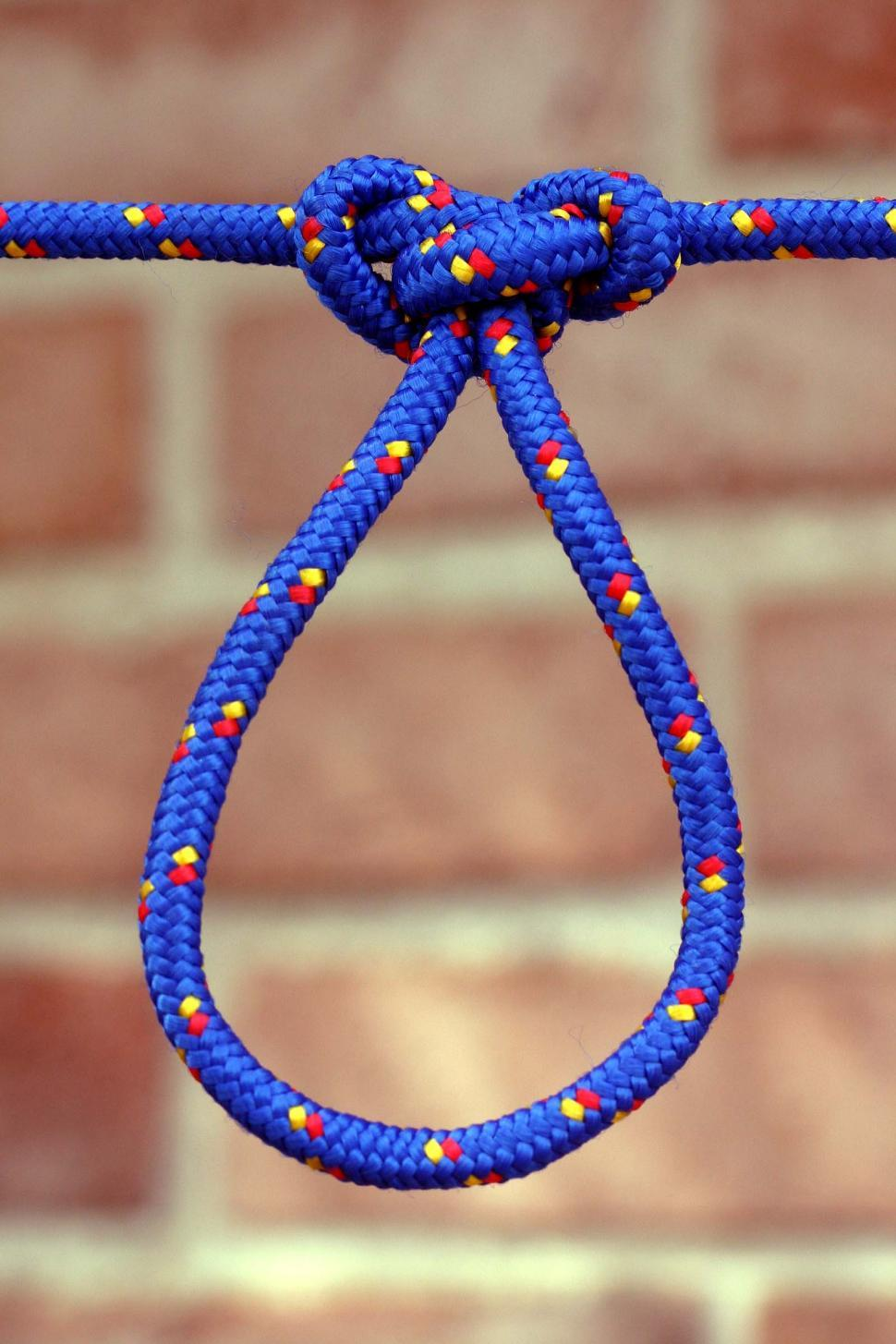 Download Free Stock HD Photo of Butterfly loop knot Online