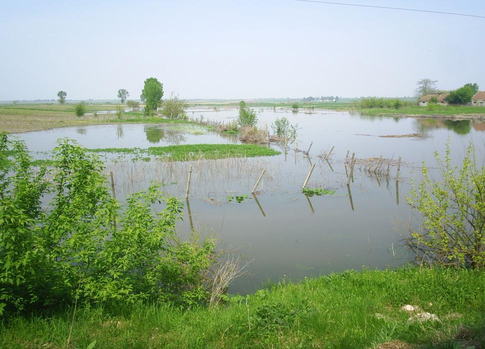 Download Free Stock HD Photo of Flooded rural area water invading the fields Online