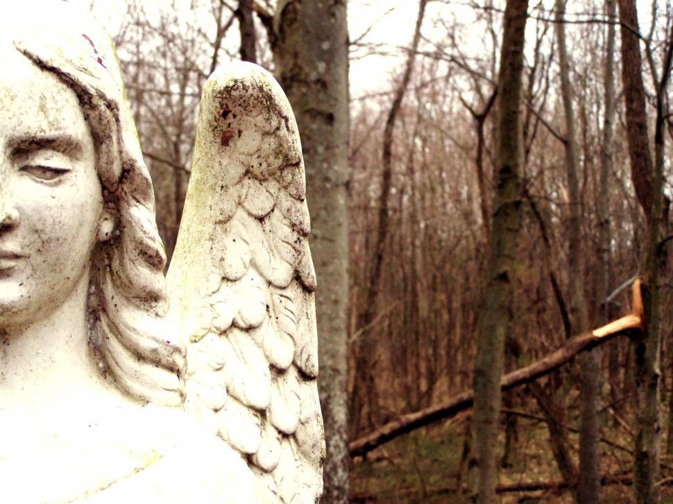scary image of angel - photo #27