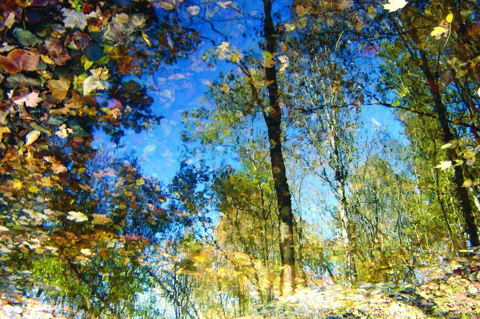 Download Free Stock HD Photo of Fall Mirror Online