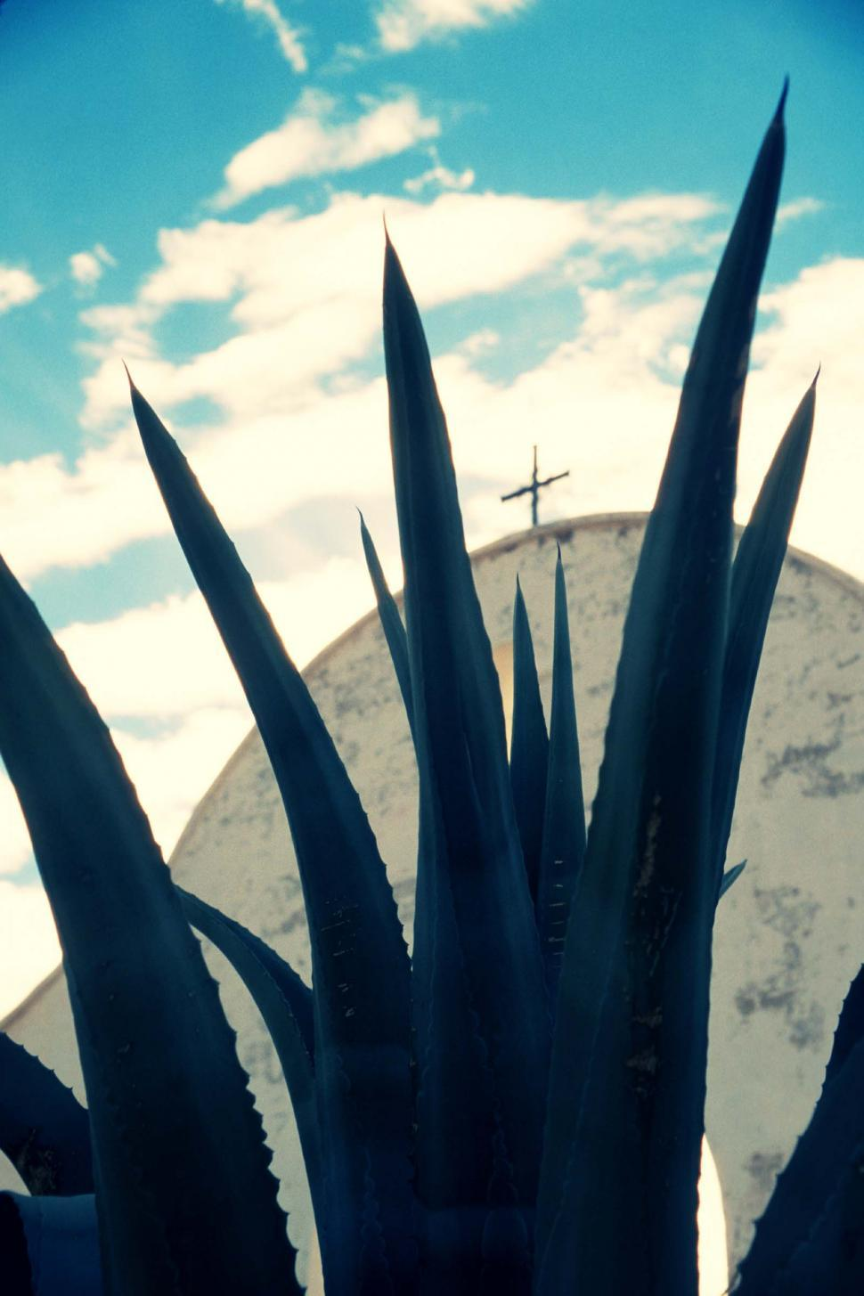 Download Free Stock HD Photo of Desert Arch and Agave, San Xavier Mission Online