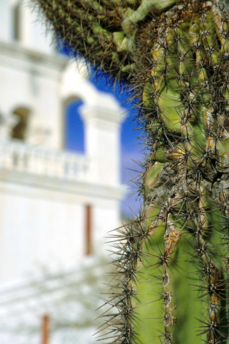 Download Free Stock HD Photo of Cactus and Mission San Xavier del Bac Online