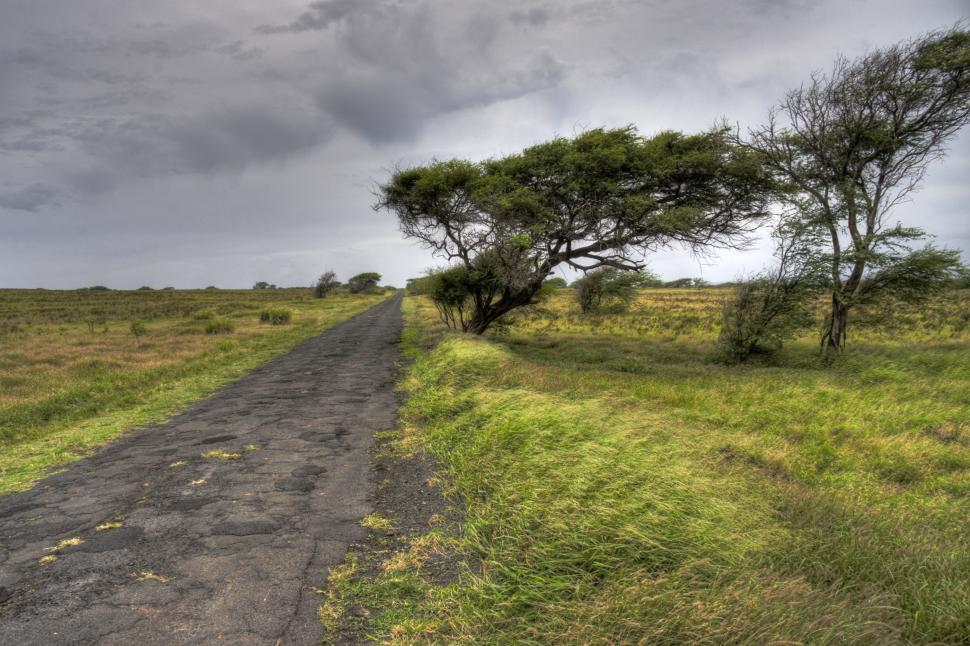Download Free Stock HD Photo of Rough Road Online
