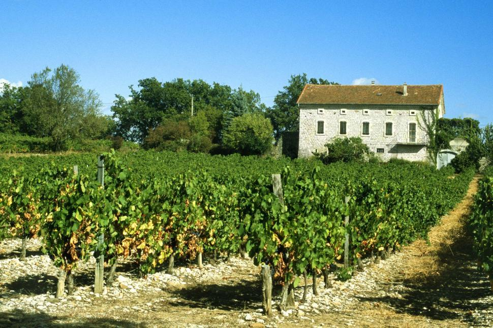 Download Free Stock HD Photo of Stone building in French vineyard Online