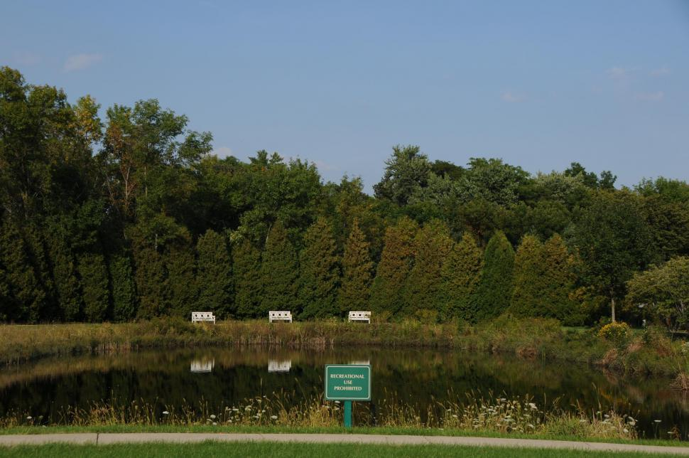 Download Free Stock HD Photo of Pond Online