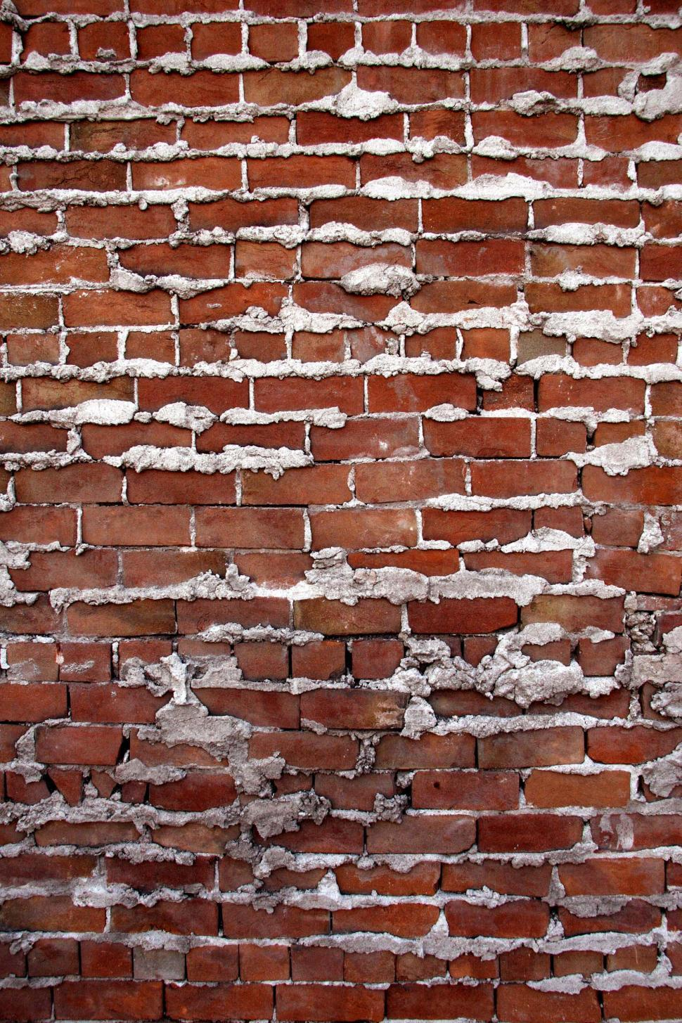 Download Free Stock HD Photo of Mortared joints in brick wall Online