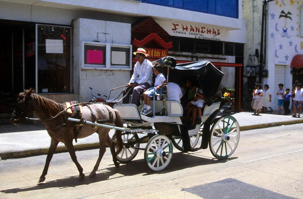 Download Free Stock HD Photo of Horse and carriage Online