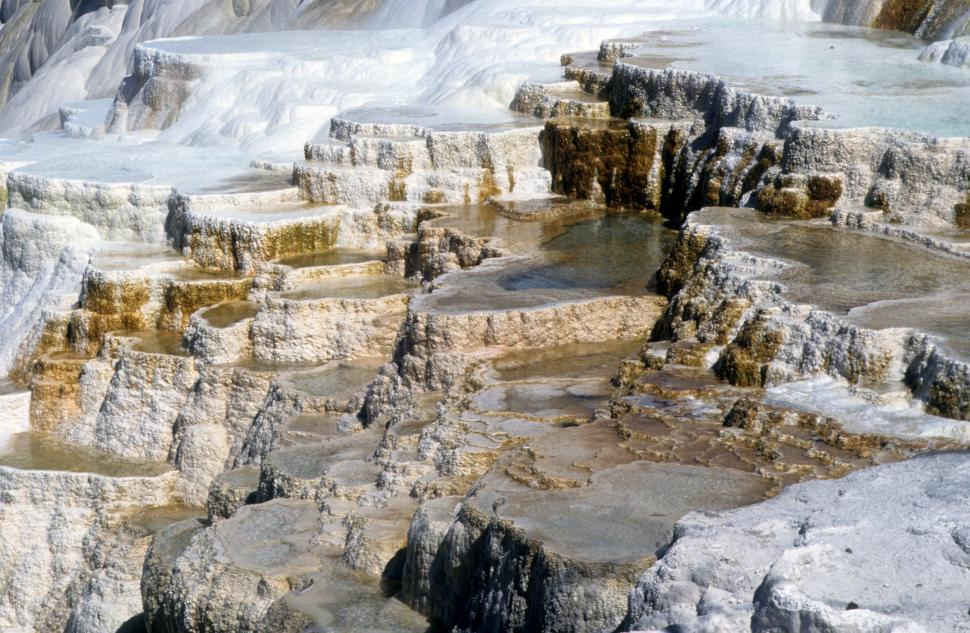 Get Free Stock Photos of Calcium deposits Online | Download Latest ...