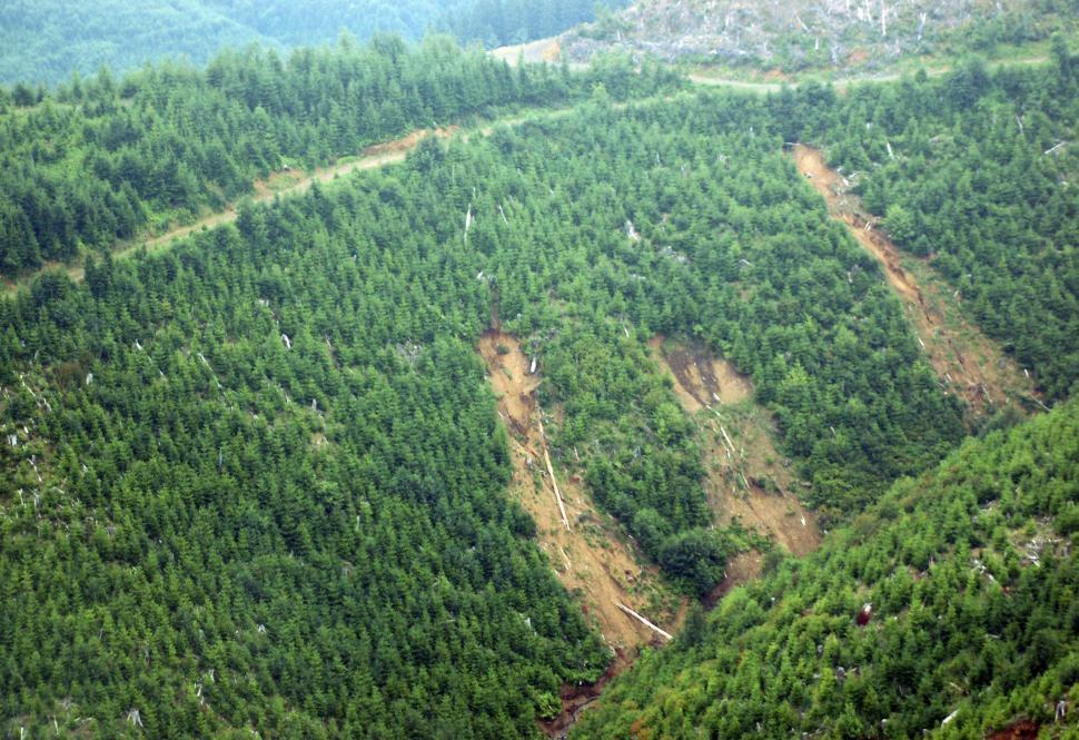 Download Free Stock HD Photo of Clearcut Logging Mudslides Online