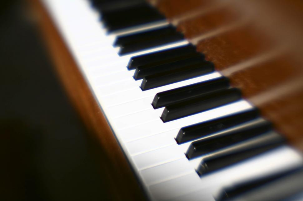 Download Free Stock HD Photo of Piano Keyboard Online