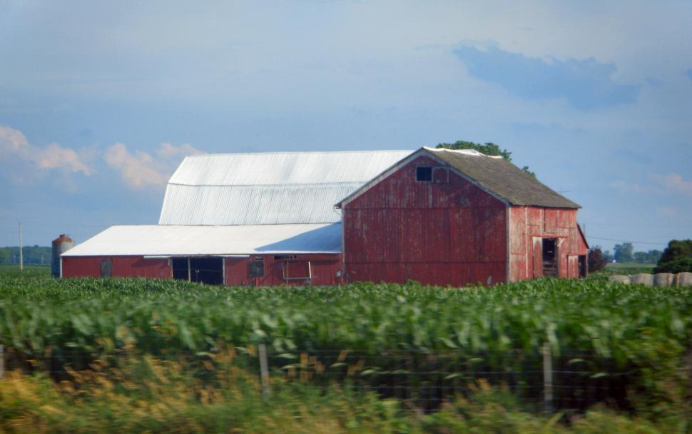 Download Free Stock HD Photo of Huge Old Roadside Barn with corn fields Online