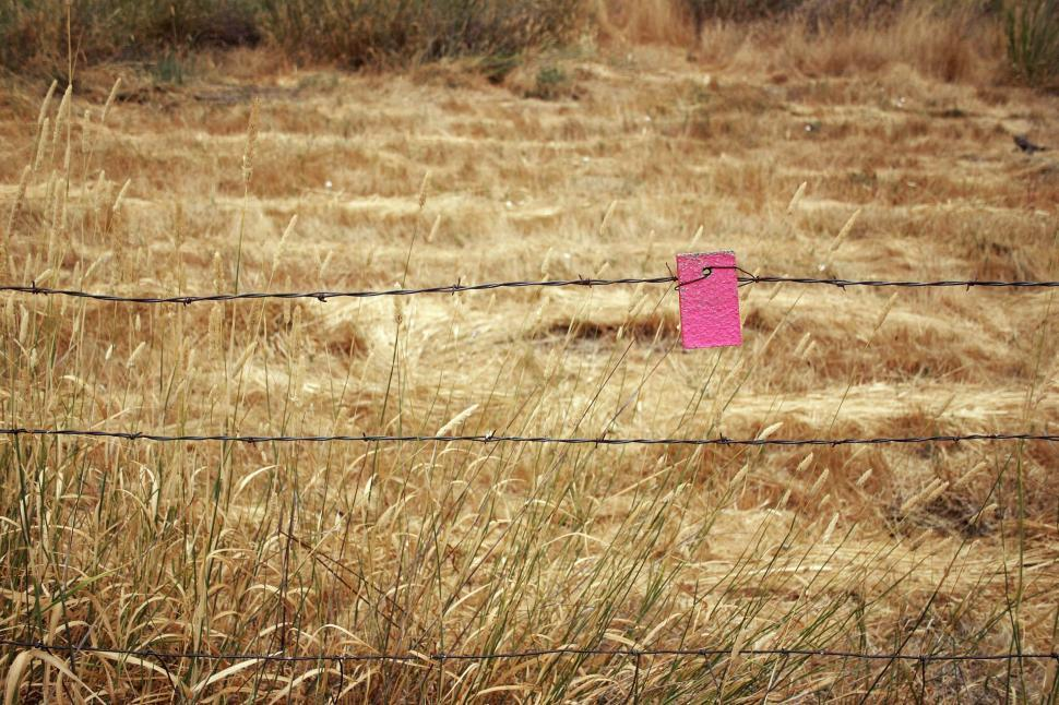 Download Free Stock HD Photo of Barbed wire and field Online