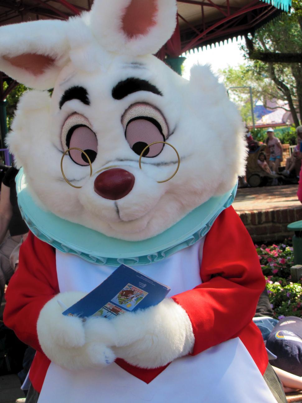 Download Free Stock HD Photo of Alice in Wonderland Rabbit Online