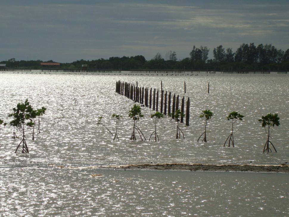 Download Free Stock HD Photo of Reservoir in Chanthaburi (จันทบุรี) Online
