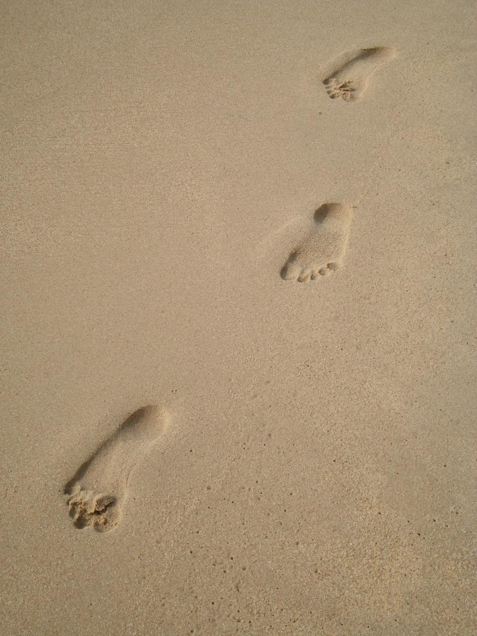 Download Free Stock HD Photo of Footprints in the Sand Online