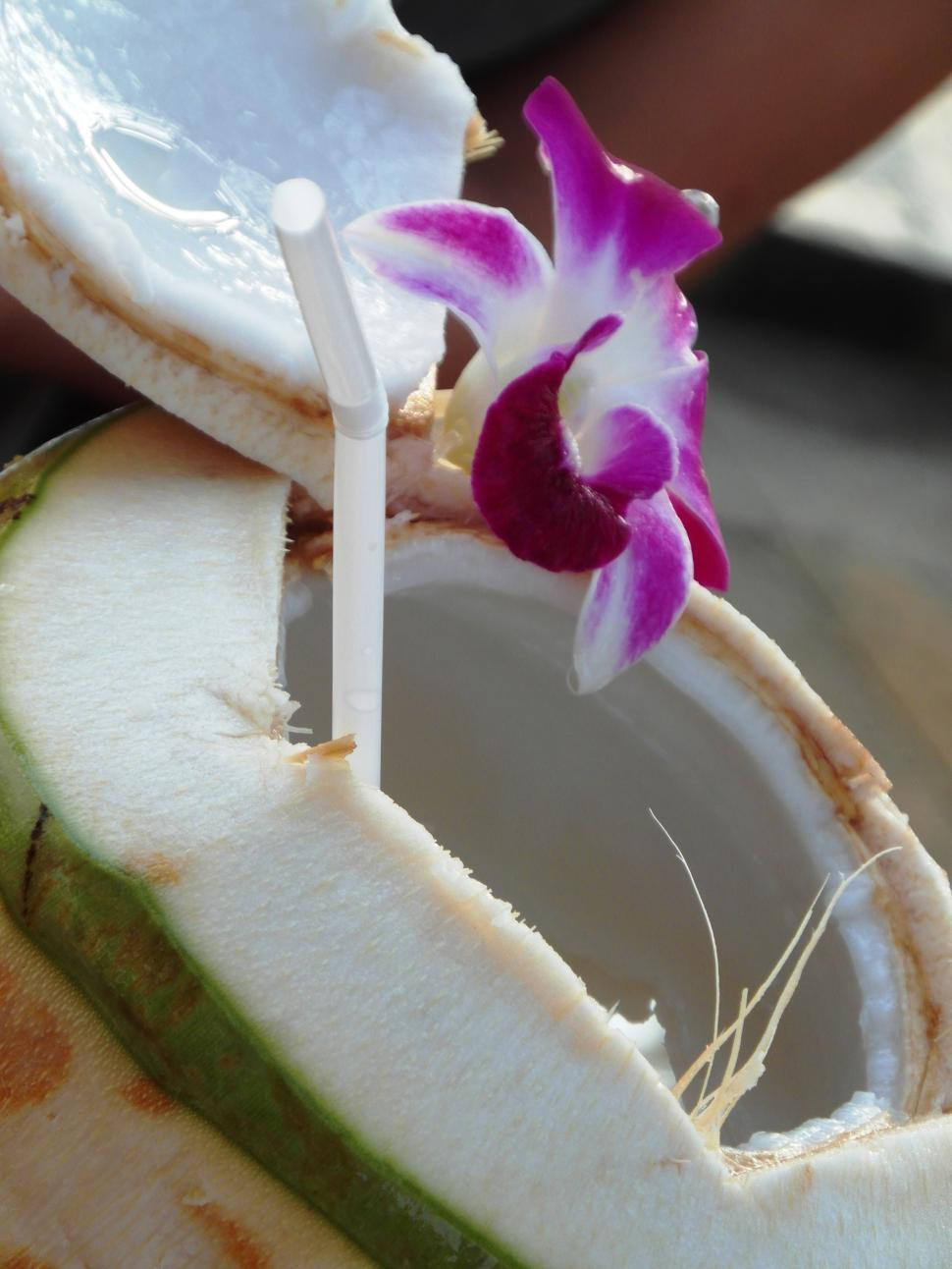 Download Free Stock HD Photo of Fresh Coconut on the Beach Online
