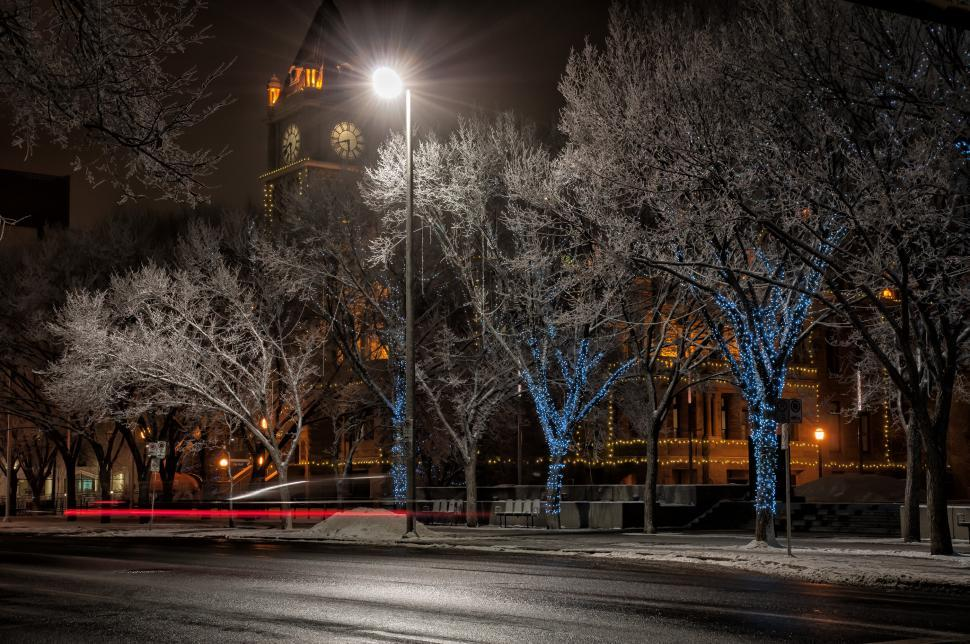 Download Free Stock HD Photo of Winter Street Online
