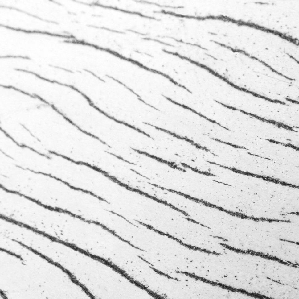 Download Free Stock HD Photo of Wood Pattern B&W Online