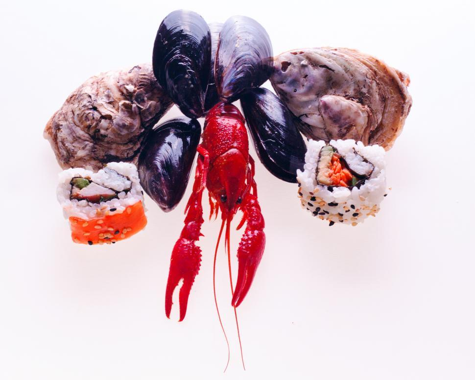 Download Free Stock HD Photo of seafood Online
