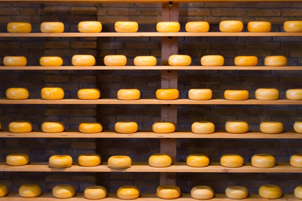Download Free Stock HD Photo of Cheese Online