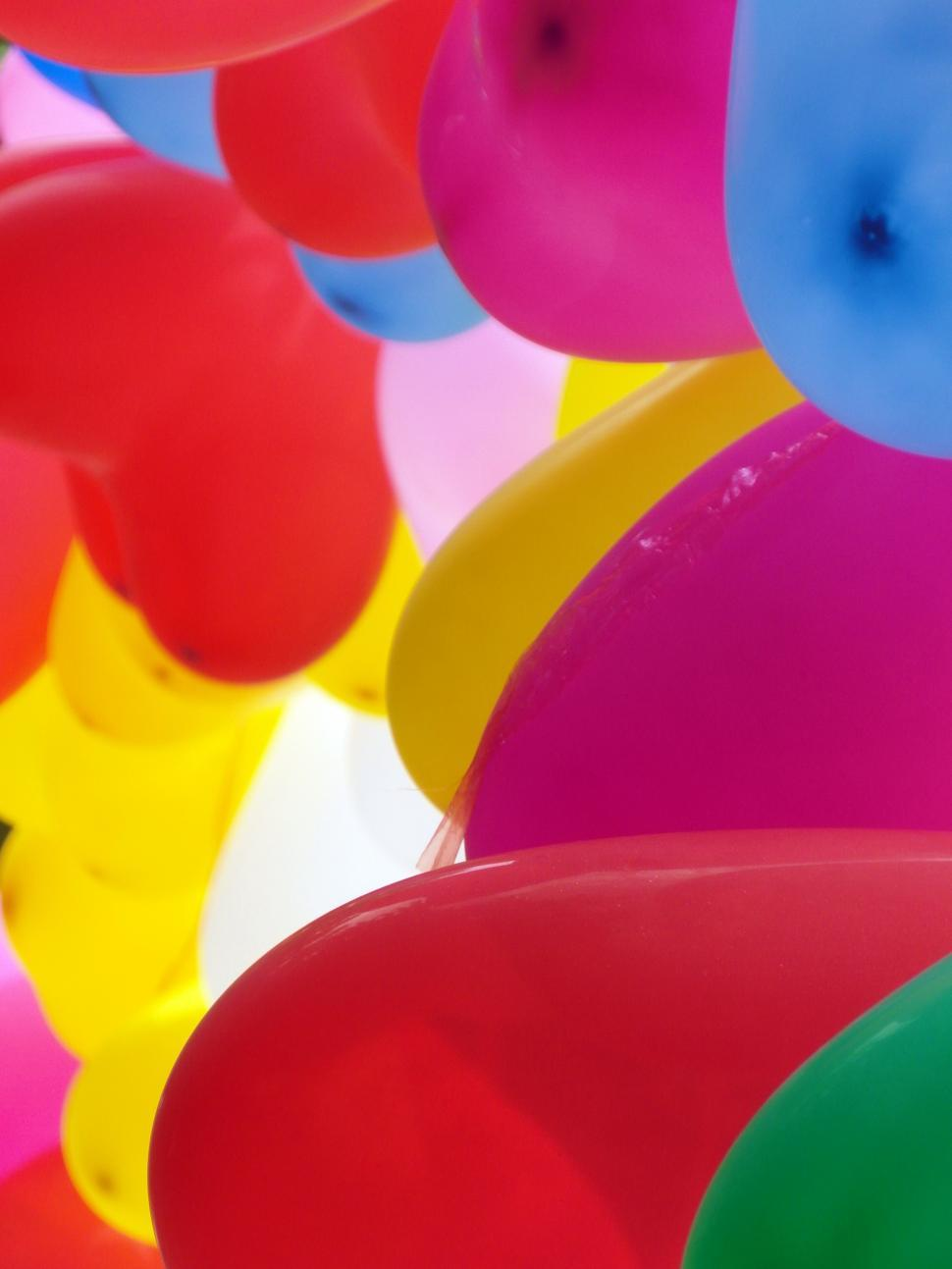 Download Free Stock HD Photo of Group of Colorful Balloons Online