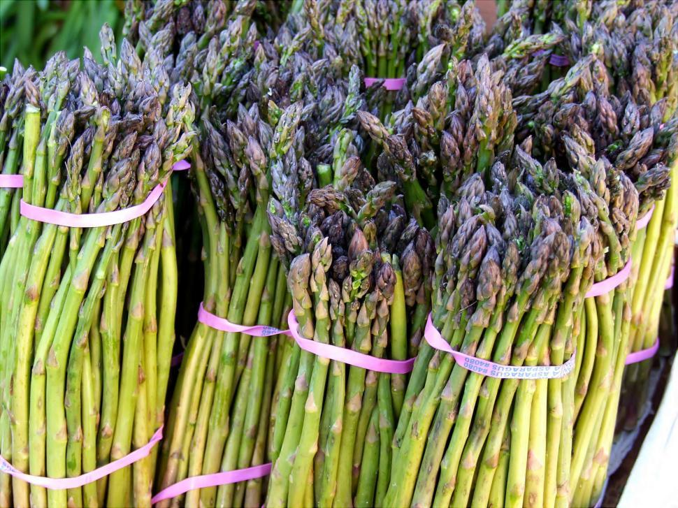 Download Free Stock HD Photo of Asparagus Online