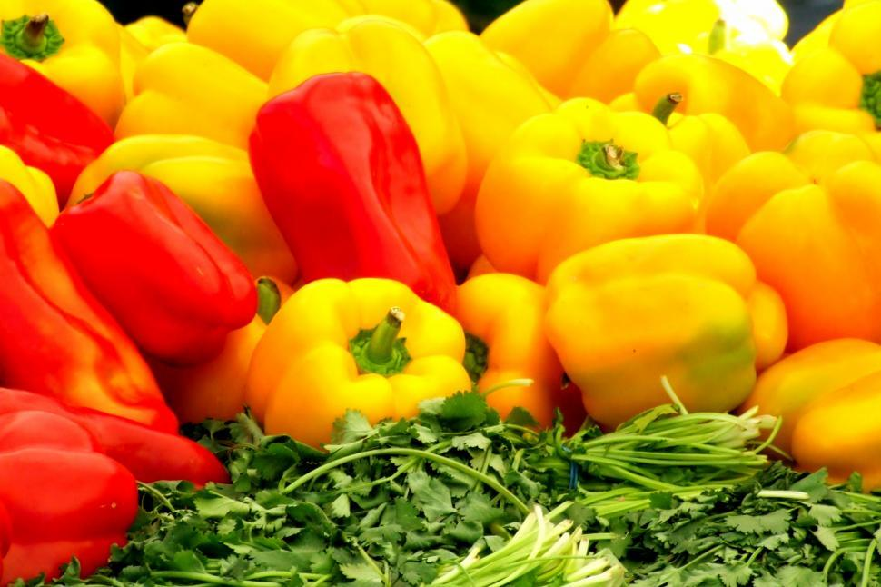 Download Free Stock HD Photo of Bright Bell Peppers Online