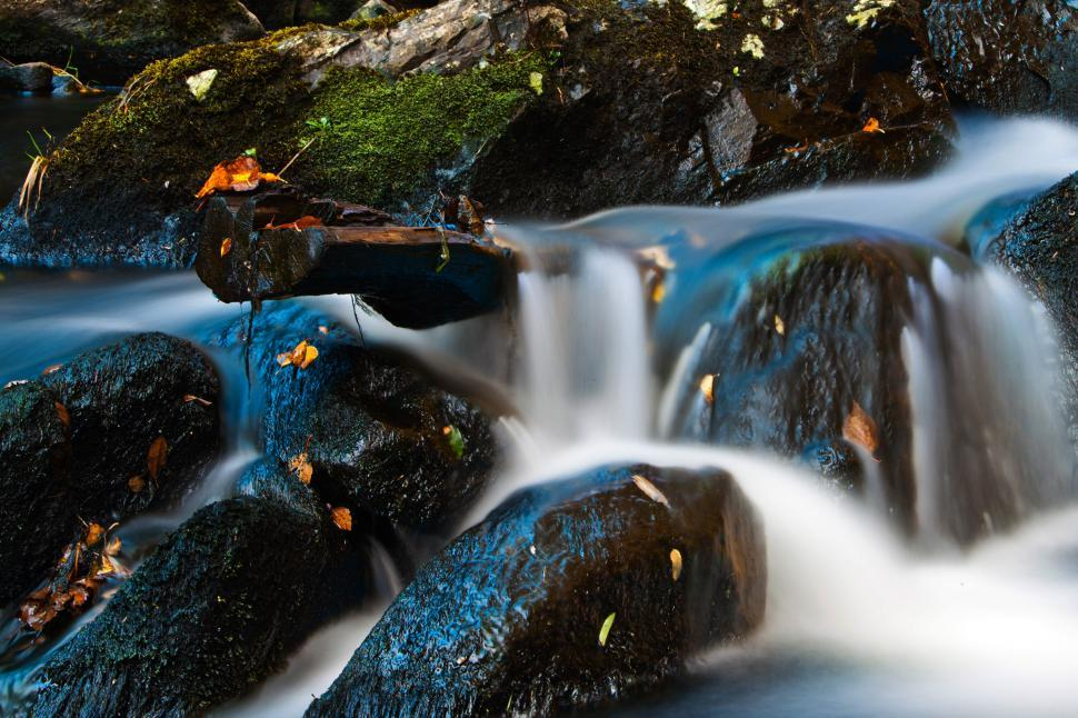 Download Free Stock HD Photo of Autumn Stream Online