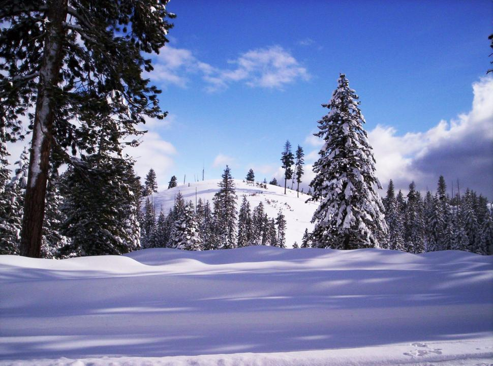 Download Free Stock HD Photo of Winter in Idaho Online