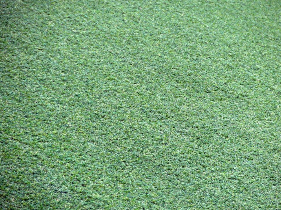 Download Free Stock HD Photo of Artificial Grass Background Online