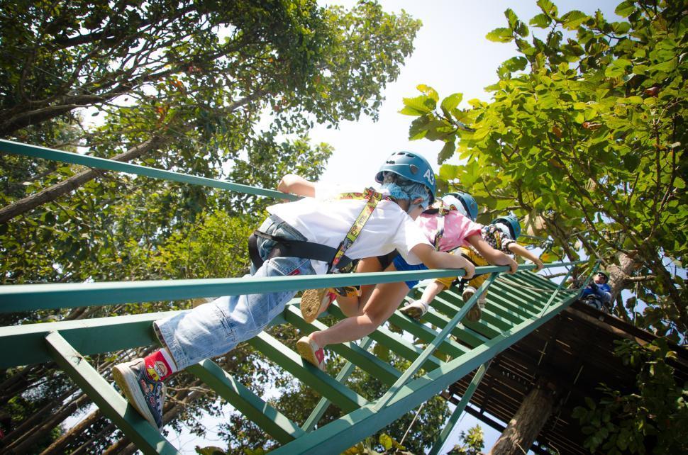 Download Free Stock HD Photo of Zipline Activities Online