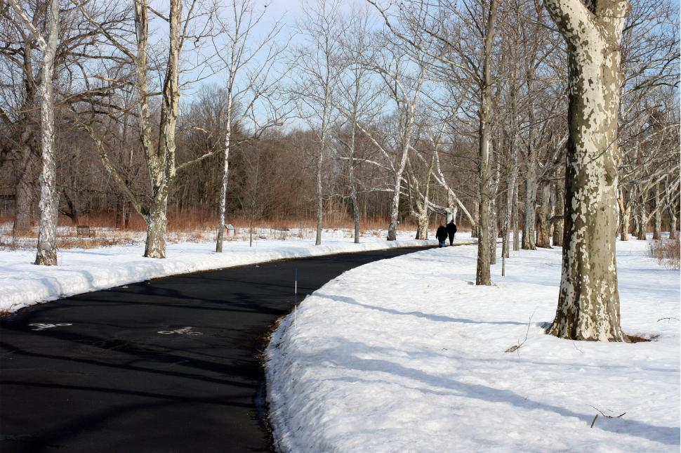Download Free Stock HD Photo of Path Through Snow  Online