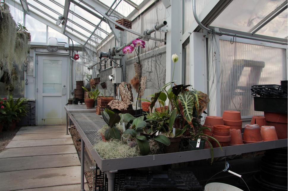 Download Free Stock HD Photo of Greenhouse Repotting Area Online