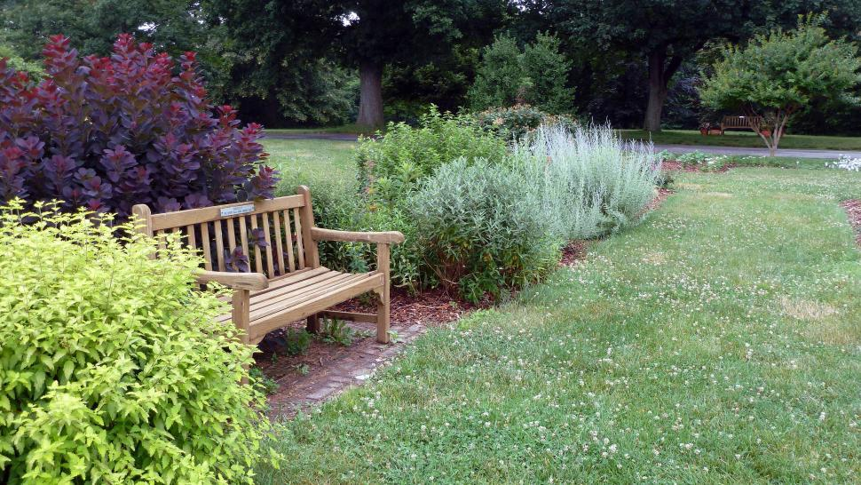 Free image of Garden bench amoungst plants and herbs in herb garden at Rutgers Garden NJ