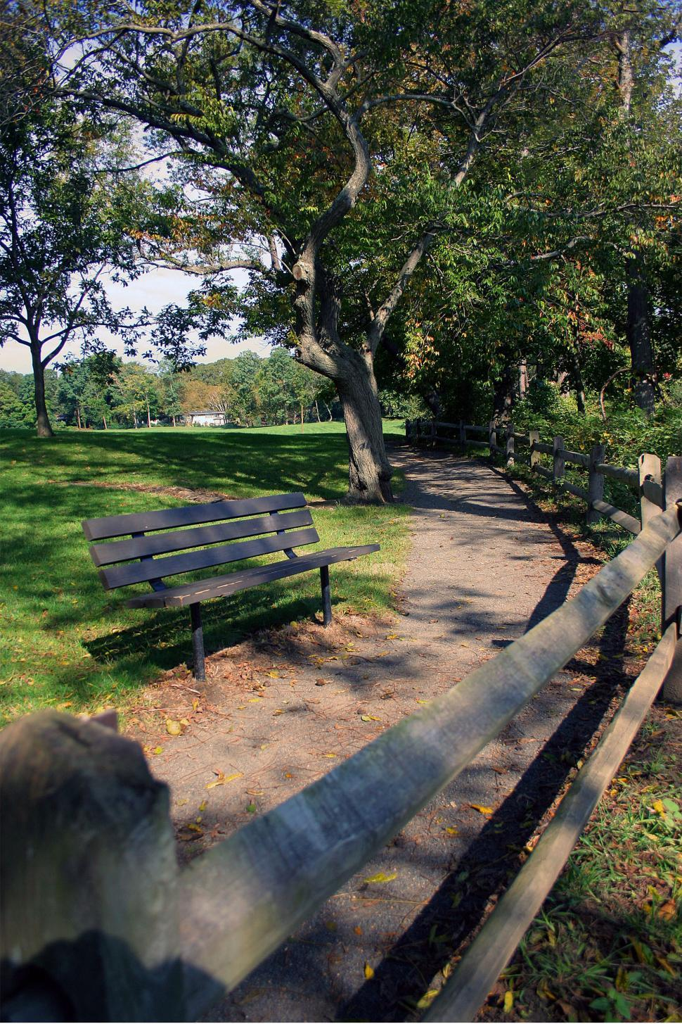 Download Free Stock HD Photo of Bench Along Walkway at Park Online