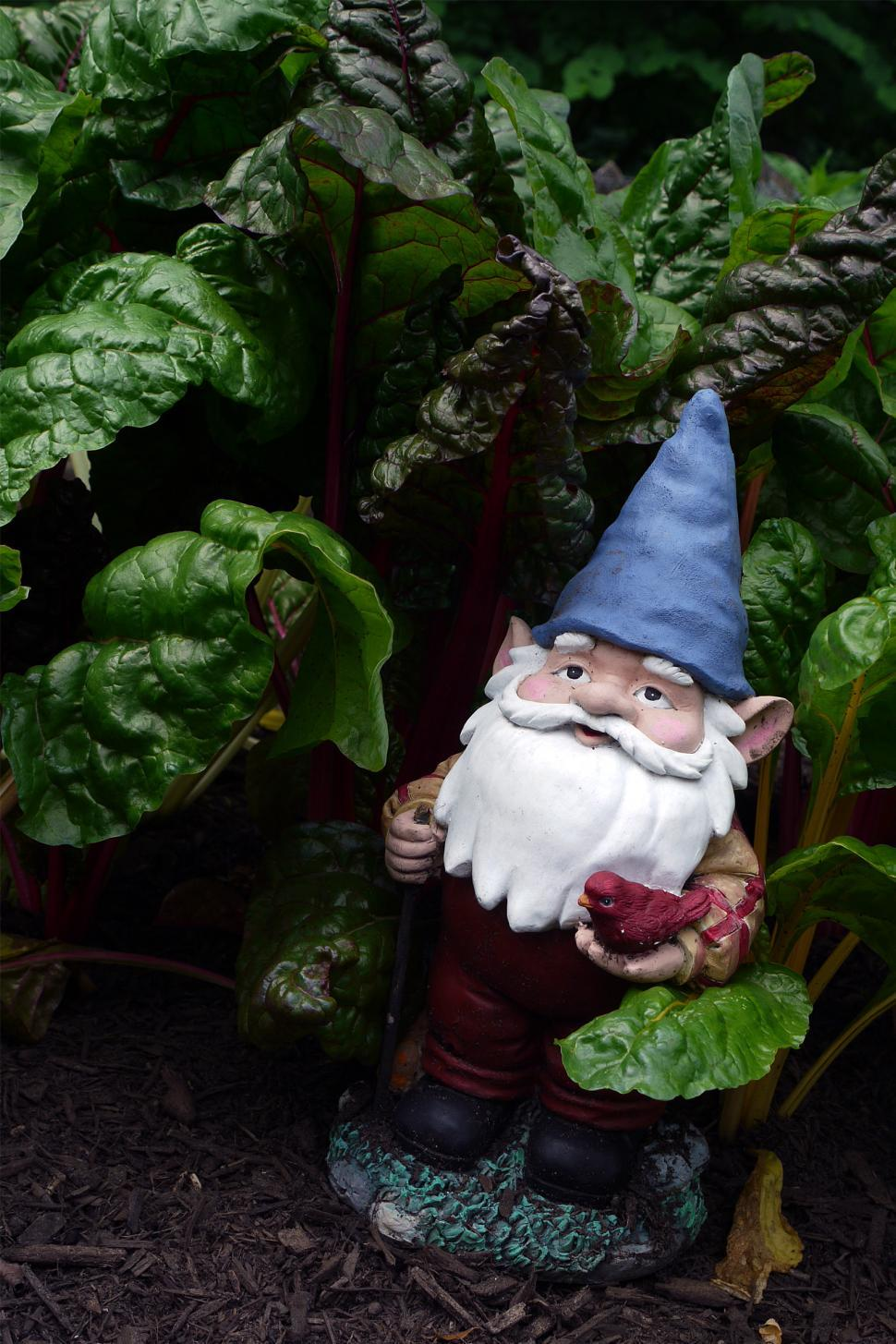 Download Free Stock HD Photo of Gnome In A Garden Online