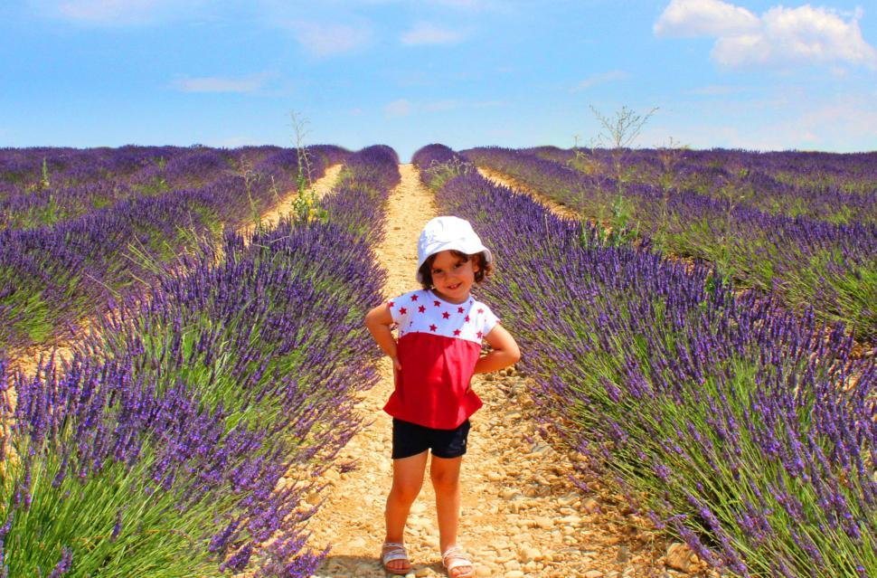 Download Free Stock HD Photo of Child posing on a field of lavenders in Provence, France Online