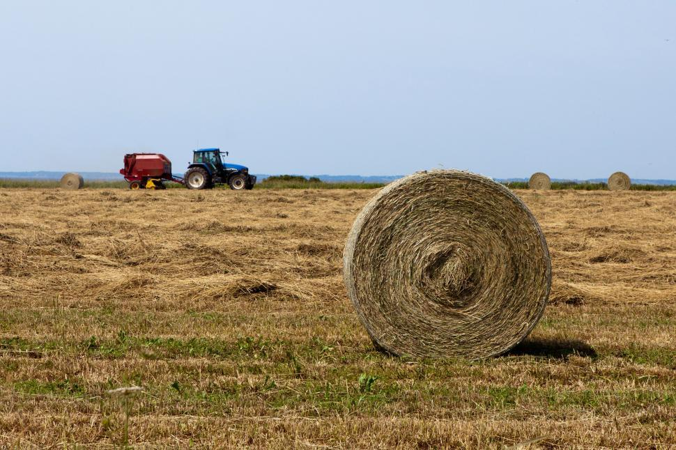 Download Free Stock HD Photo of Farming Online