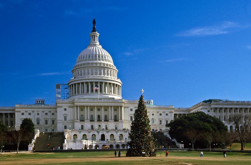 Download Free Stock HD Photo of US Capitol Christmas Tree Online
