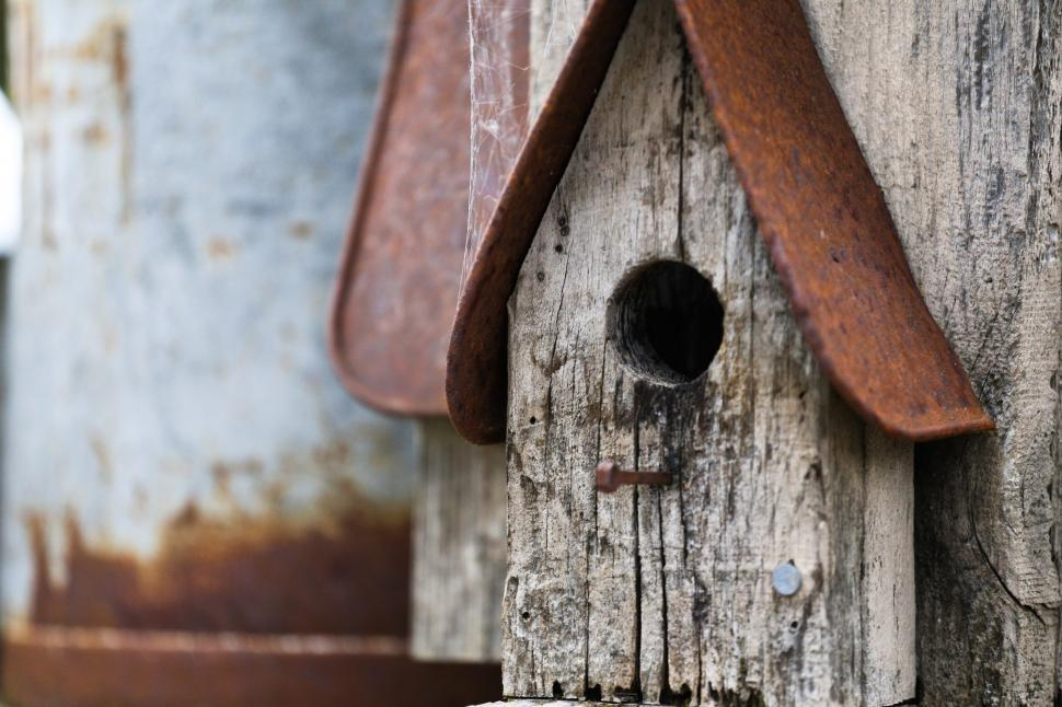 Download Free Stock HD Photo of Bird house Online