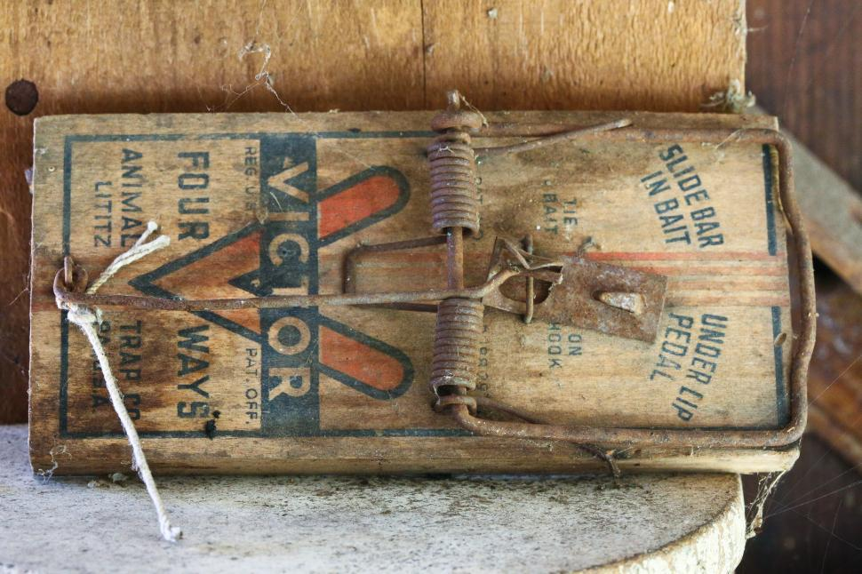 Download Free Stock HD Photo of Mouse trap Online