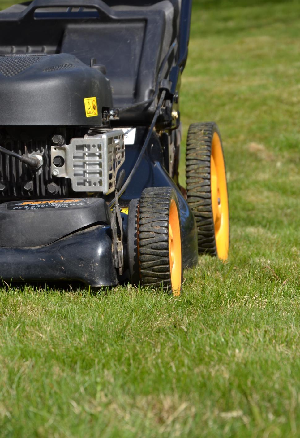 Download Free Stock HD Photo of Moving the lawn Online