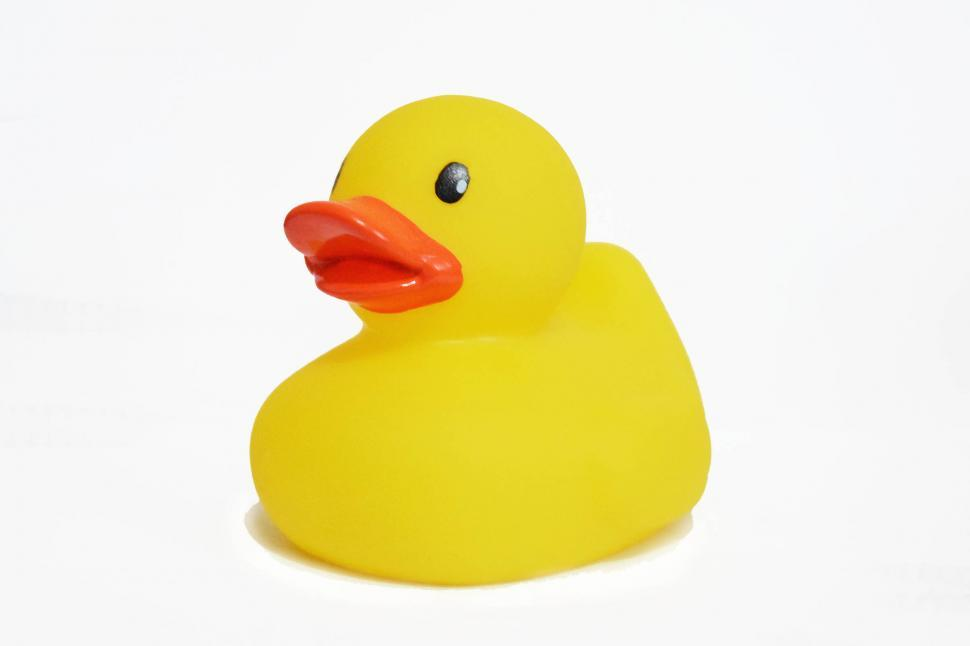 Download Free Stock HD Photo of Rubber Duck Online