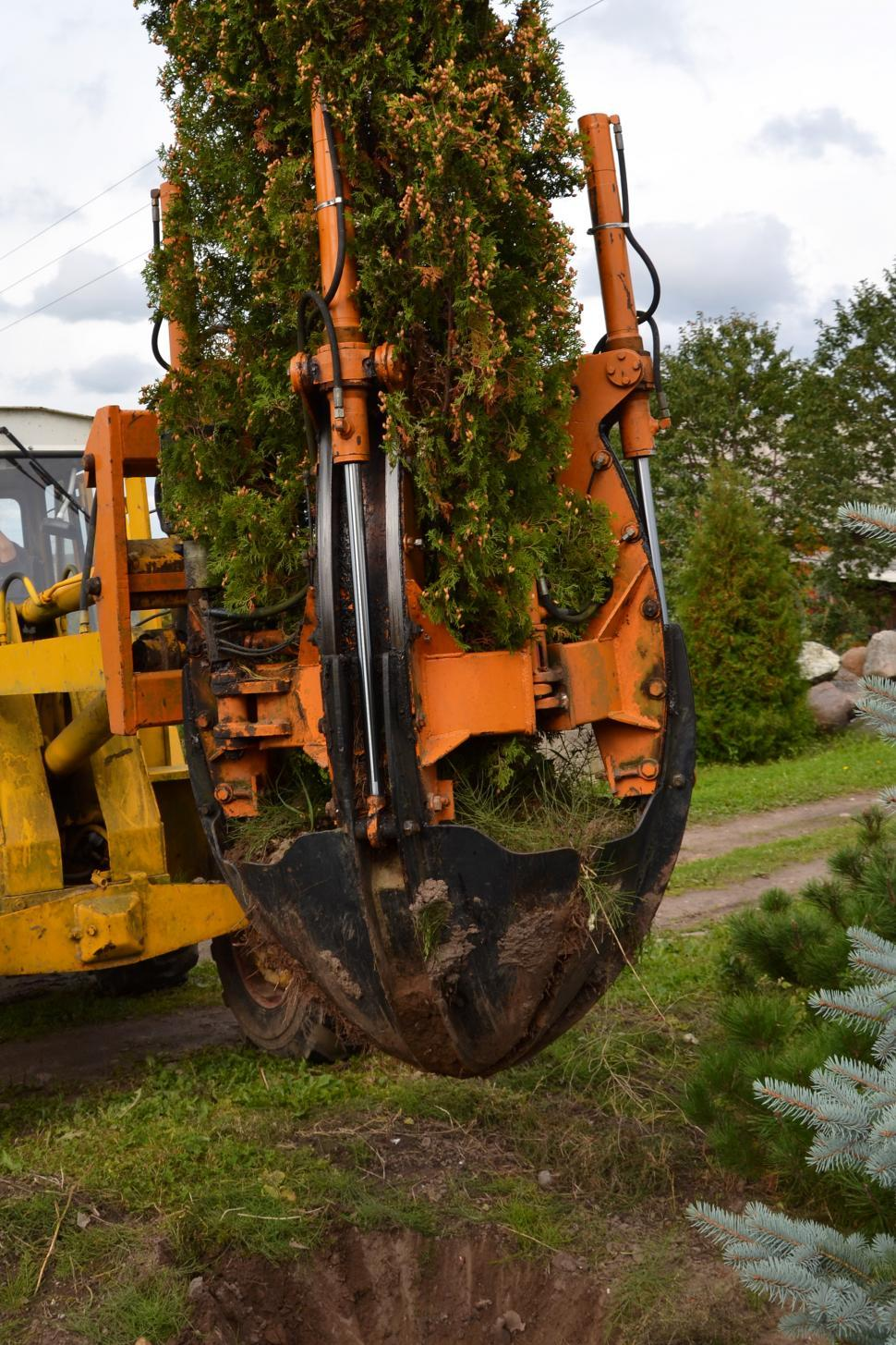 Download Free Stock HD Photo of Tree Transplanting Equipment Online